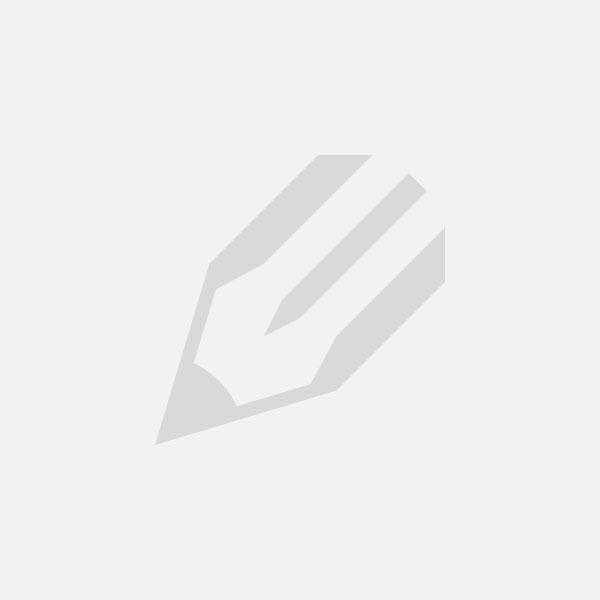 Attaque et chasse d'un acarien sur collembole