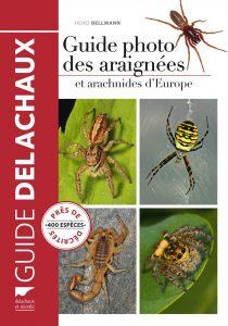 Delachaux guide araignée