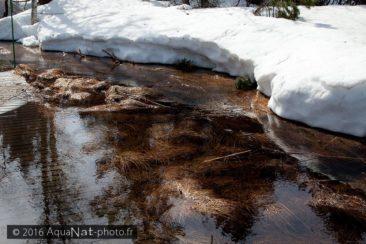 La fonte de la neige rend le circuit de visite encore impraticable (Avril 2013)